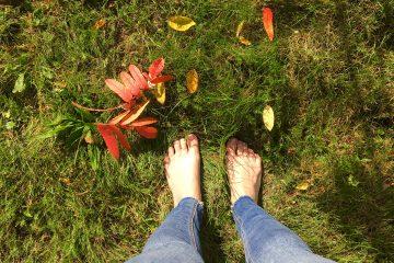 bose stopy na trawie
